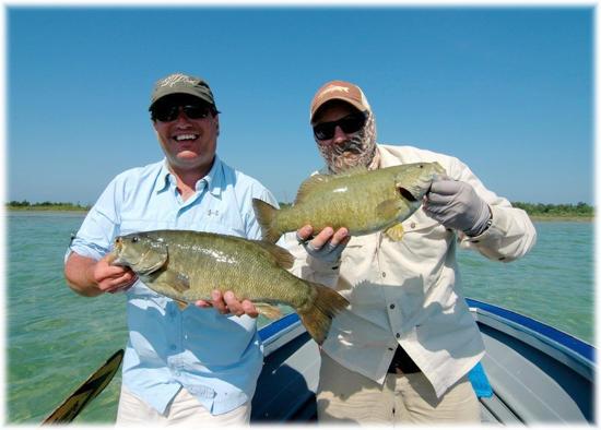 Hunting fishing faq photos articles beaver for Michigan dnr fishing guide